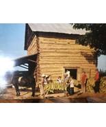Vintage Farming Stringing Hanging Tobacco At Harvest Time Postcard Horse... - $14.62
