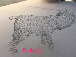 English Bull Dog Topiary Frame - $100.00