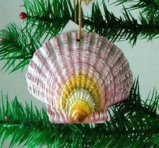 Tropical Beach Seashell Christmas Ornament Purple ORNShell05 Resin - $15.76