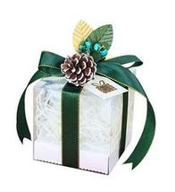 10 Pcs Christmas Apple Boxes Transparent Candy Gift Box Green Ribbon + P... - $28.00