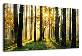 arteWOODS Canvas Wall Art Forest Morning Painting Nature Pictures Panora... - $90.22