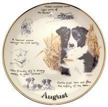Danbury Mint Border Collie plate August by Paul Doyle CP2162 - $38.21