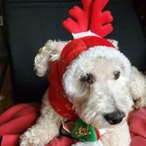 Santa Hat Scarf Set Christmas Costume Xmas Antlers Mini Dogs Puppy Cat 1... - $14.69