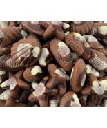 Nautilus Belgian Chocolate Seashells Candy, 6 Different Chocolate Shapes... - $19.39