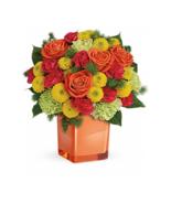 Teleflora's Citrus Cube Style# 12N400 - VASE ONLY!1 - $18.48 CAD