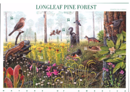 Longleaf Pine Forest (Nature of America), Full Sheet of 10 x 34-Cent Pos... - $9.92