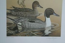 1984 Arkansas Duck Print & Stamp >by Larry Hayden LIt Edition  - $74.25