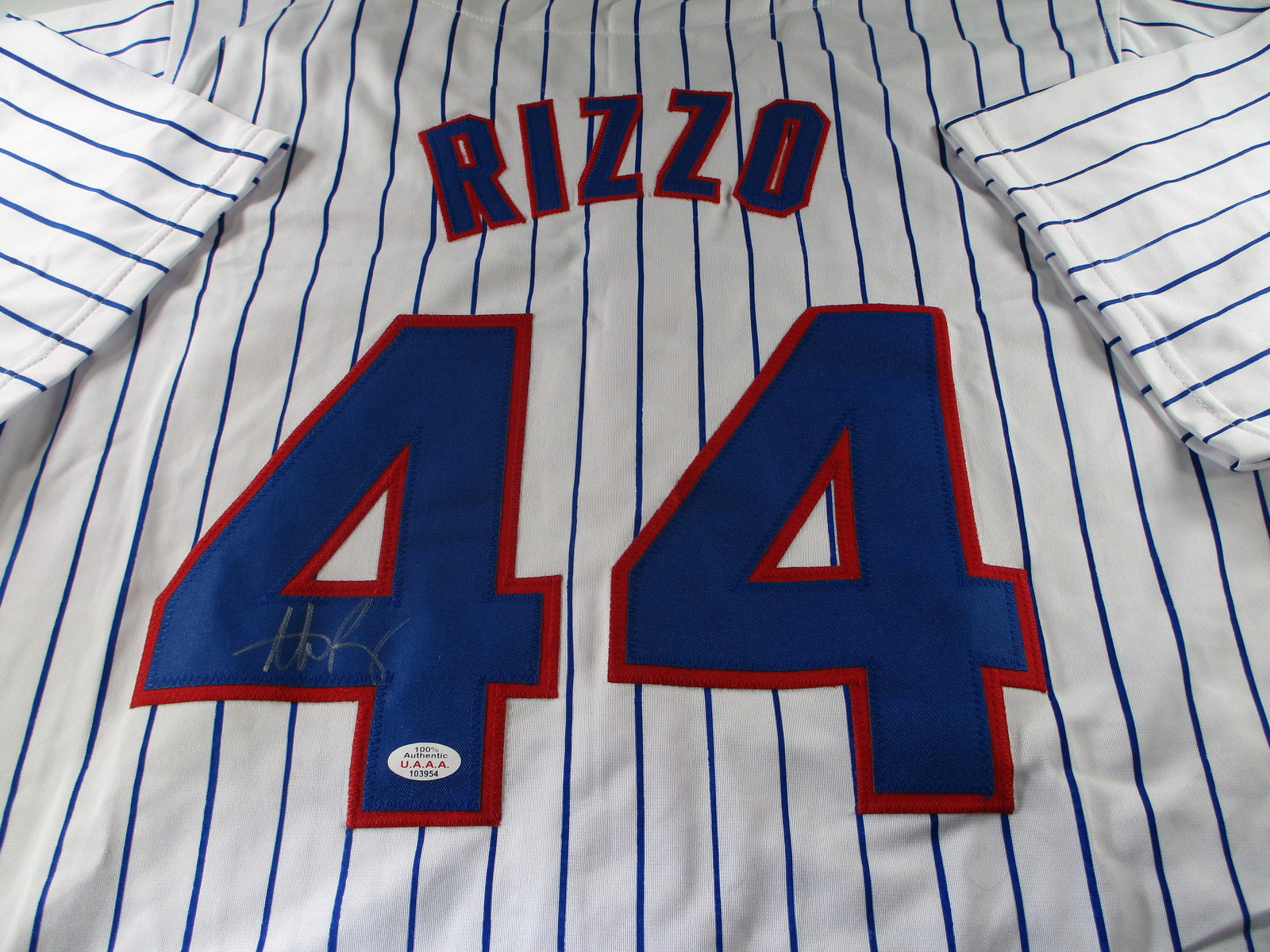 ANTHONY RIZZO / CHICAGO CUBS / AUTOGRAPHED CHICAGO CUBS CUSTOM JERSEY / COA