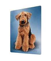 Airedale Terrier Dog Art Portrait Print Woven Throw Sherpa Plush Fleece ... - $140.35 CAD