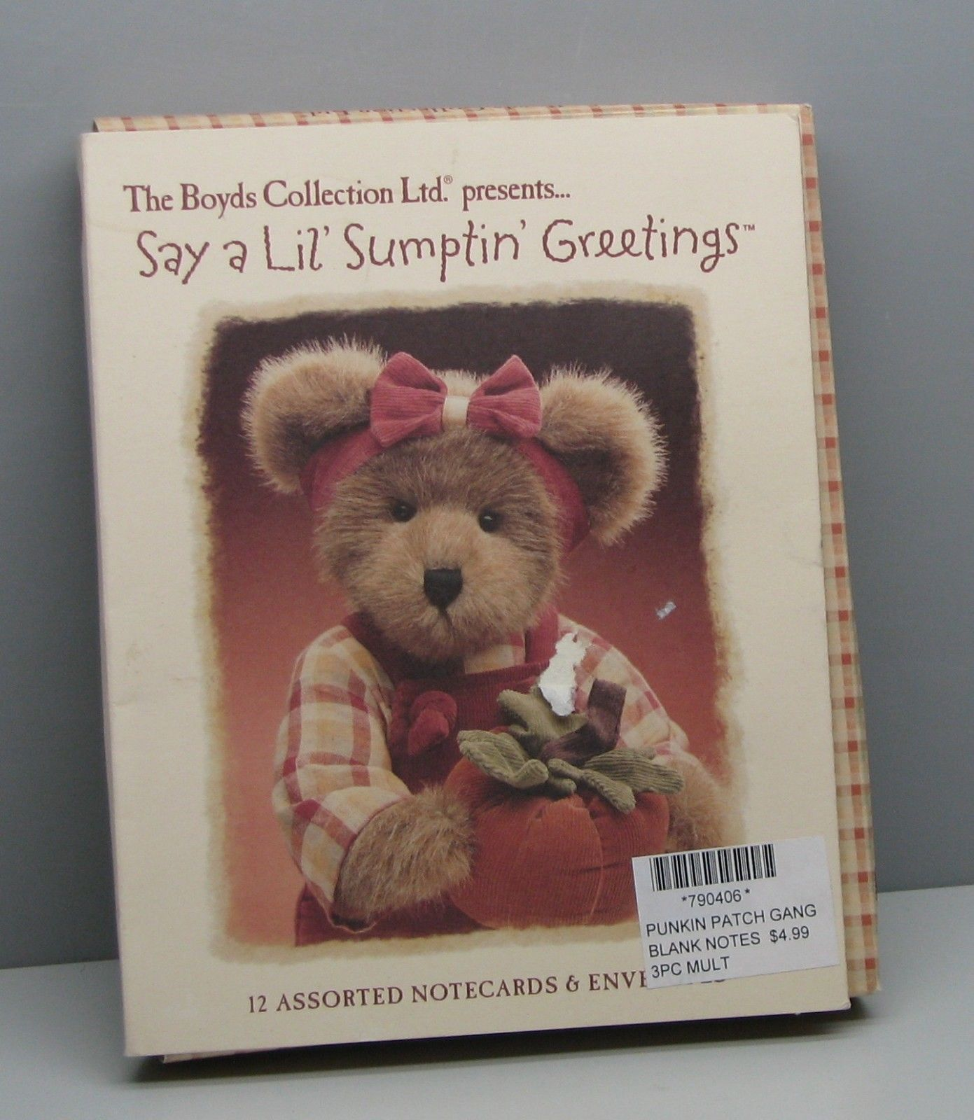 Boyds Say A Lil' Sumptin' Greeting Cards Set Of 12 #790406 Pumpkin Patch Gang
