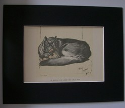 Print German Shep Dog Alsatian Looks Like Wolf Cecil Aldin 1986 Bookplat... - $23.75