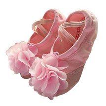 Dance Class Ballet Shoes/Dance Shoes For Pretty Girls (19CM Length)-Pink
