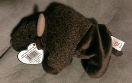 TY Beanie Baby ROAM BUFFALO INDIAN COWBOY PLUSH STUFFED ANIMAL Retired b... - $4.94