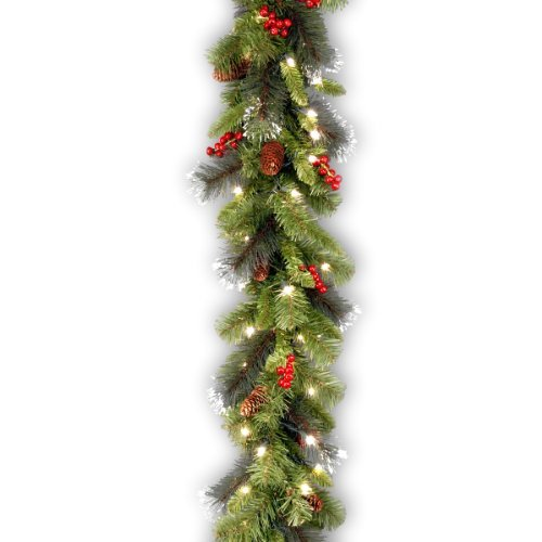 National Tree 9 Foot by 10 Inch Crestwood Spruce Garland with Silver Bristle, Co
