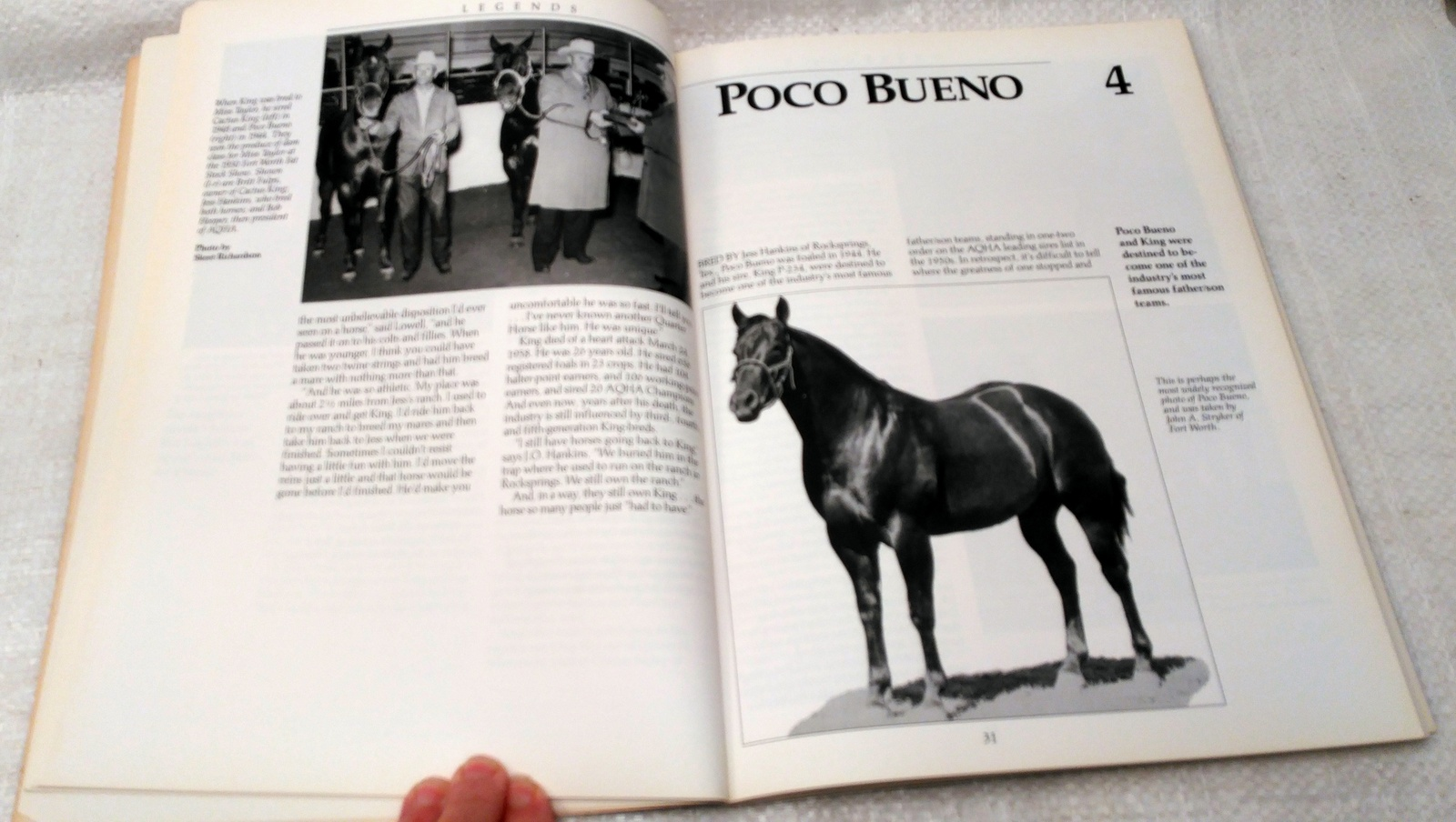 Legends Outstanding Quarter Horse Stallions and Mares by Diane Simmons 1993