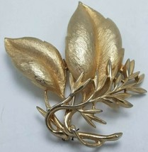 """Signed Sarah Coventry Vintage Gold Tone Leaf Brooch Pin 3"""" x 2 3/4"""" - $14.95"""