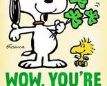 Snoopy st patricks day birthday card root 329sp2123 pv.1.sp2123.jpg source image 2 thumb155 crop