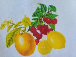 """Vintage Inspired Kitschy Fruit Cotton Flour Sack Tea Towel 15"""" x 25"""", 1940s-50s image 2"""