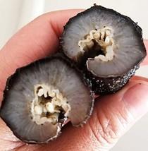 DOL 大包裝 8 times Soaked Rate.8倍高泡發率,Sun Dried Sea Cucumber,Wild Caught Deep Sea G - $226.08