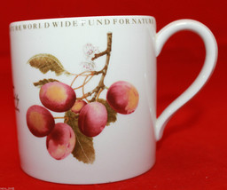 Wedgwood Barlaston Natural History Collection Victoria Plum White Coffee... - $63.21