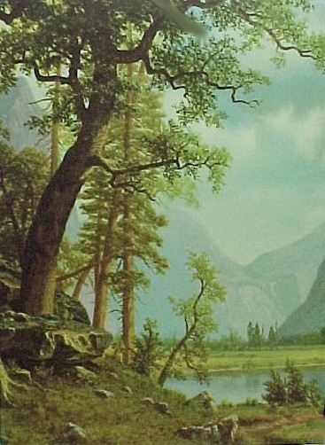 69325a trees mountain scene calendar art print lithograph 1940s
