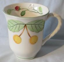 Mikasa Cherry Grove Mug - $14.74