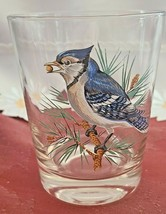 VINTAGE HAND PAINTED BLUE JAY OLD FASHION GLASS West Virginia Glass Spec.
