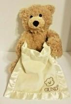 Baby Gund * Peek-a-Boo Bear Teddy Plush Doll * Animated Interactive Tal... - $14.55
