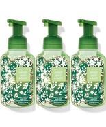 3 Bath & Body Works Sweet Mint & Rain Gentle Foaming Hand Soaps w/Essent... - $28.04