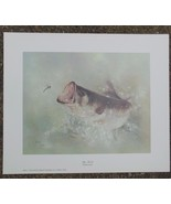 "Vintage Collector's Print Big Mouth  by Betty Allison 1979 11 x 13"" Bass... - $18.00"