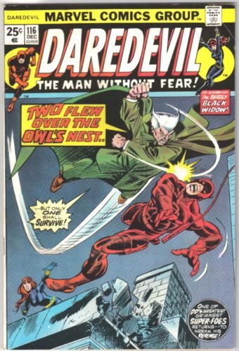 Daredevil Comic Book #116 Marvel Comics 1974 VERY GOOD+