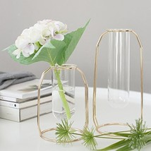 PuTwo Vases Set of 2 Metal Flower Vase Glass Vase Planter Terrariums Gol... - $55.99