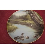 Maynard Reece DUCK collector plate THE SWIMMING LESSON Water Birds - $10.00