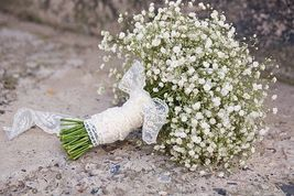 SHIP From US, 50 Seeds Baby's Breath Seeds, DIY Beautiful Flower AM - $21.99