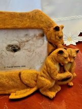 4X6 Picture Frame Lion Family Design Lion Lioness Cub by Popular Creations NEW image 3