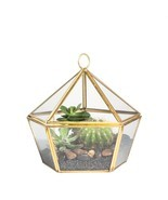 Modern Planter Artistic Brass Copper Clear Glass Pentagon Shape Glass Ge... - $41.73 CAD