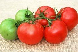 30 Seeds of Honey Hybrid - Tomatoes Mid Season - $16.34