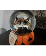 Hallow HOme Halloween Black Cats Witch Water Globe Snow Globe Tabletop D... - $36.99