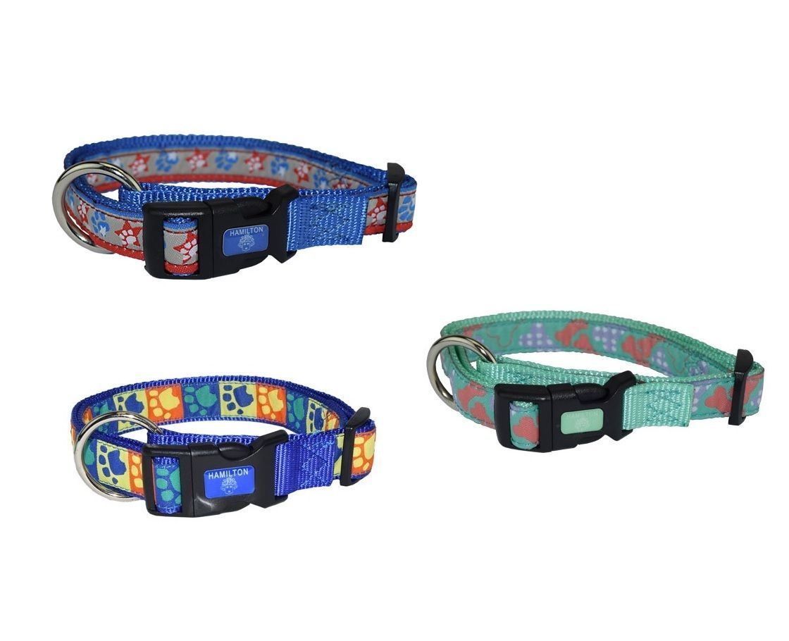 Fashion Ribbon Collar for Dog - Highest Quality Shoe grade eyelet 2 Szes 3 Color - $15.67 - $16.15