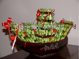 20 seeds / bag,Lucky Bamboo seeds, potted balcony, planting is simple, b... - $7.72