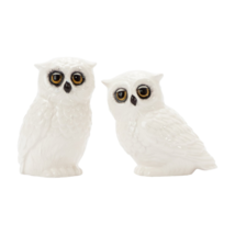 Fitz and Floyd 20-330 Owl Salt and Pepper Set NEW in Box - $17.99