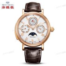 Seagull Men's Watch 18K Gold Perpetual Calendar Tourbillon Questioning Watch 3 i - $478,554.30