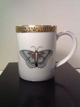 Gold Buffet Royal Gallery Porcelain Blue Aqua Butterfly Cup Mug Sri Lank... - $14.85