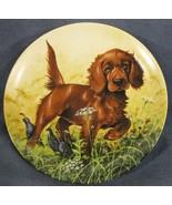 Missing The Point Irish Setter Collector Plate Field Puppies Lynn Kaatz Dog - $21.95