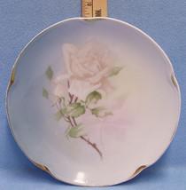 Vintage Collectors Plate Decorative White Rose Desgin J&C Louise Bavaria - $12.86