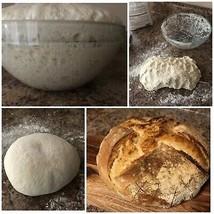 S0URDOUGH STARTER yeast bread flour mix San Francisco BEAST+ REClPES @ z - $11.82