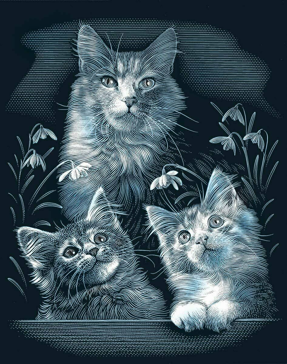 Primary image for Reeves Kittens Scraperfoil Artwork, Silver