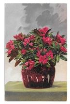 Painting Still Life Flowers Nenke Ostermaier Dresden Germany 1957 Postcard - $4.99