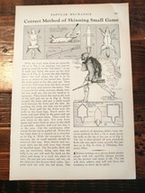 1932 How to Properly Skin Small Game Animal Skinning Hunting Outdoors Pelts - $10.00