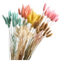 1 pack 50 head Denisfen Natural Dried Flower Colorful - $33.95
